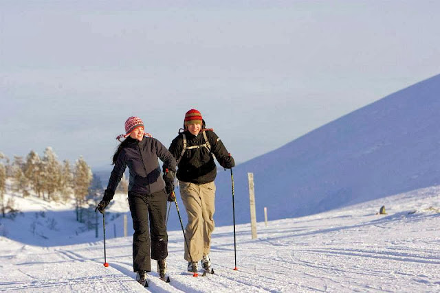 Cross-country skiing is one of the many activities to enjoy in Lapland.