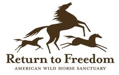 Return to Freedom Wild Horse Sanctuary