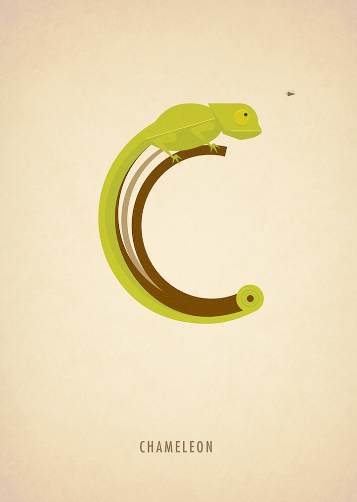 ©Marcus Reed.Animal Alphabet.Ilustración.Tipografía