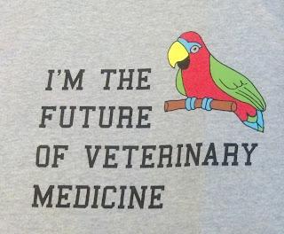 Veterinary Medicine toughest undergraduate degree