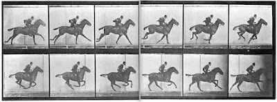 panel of 12 photographs of a man on a horse galloping