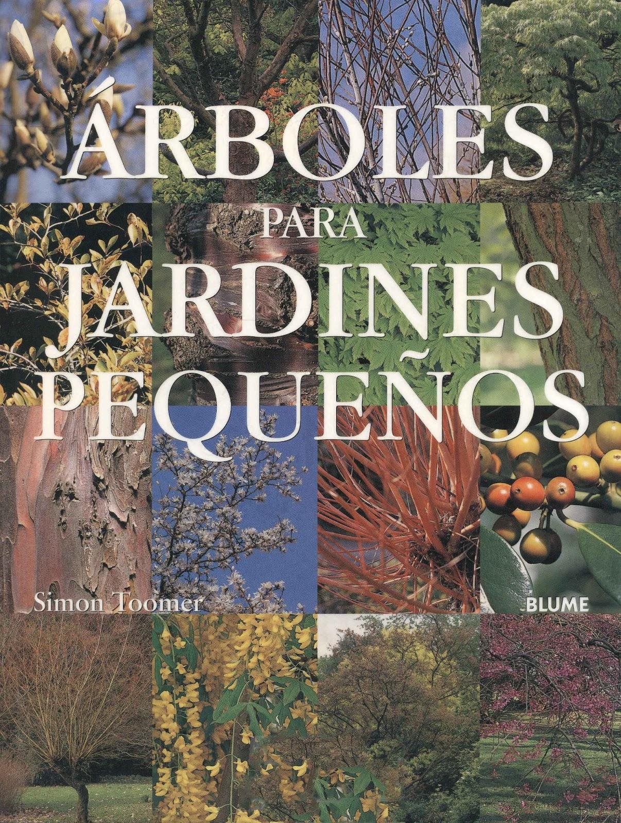 F p agraria rboles para peque os jardines for Arboles para jardines pequenos