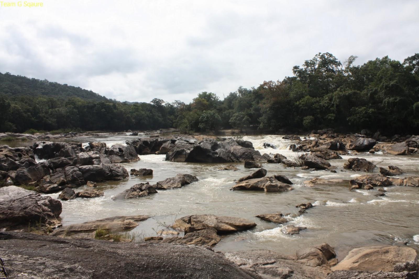 Abbi waterfalls, Chikmagaluru