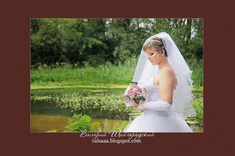 Валерий Шайгородский свадебный фотограф,