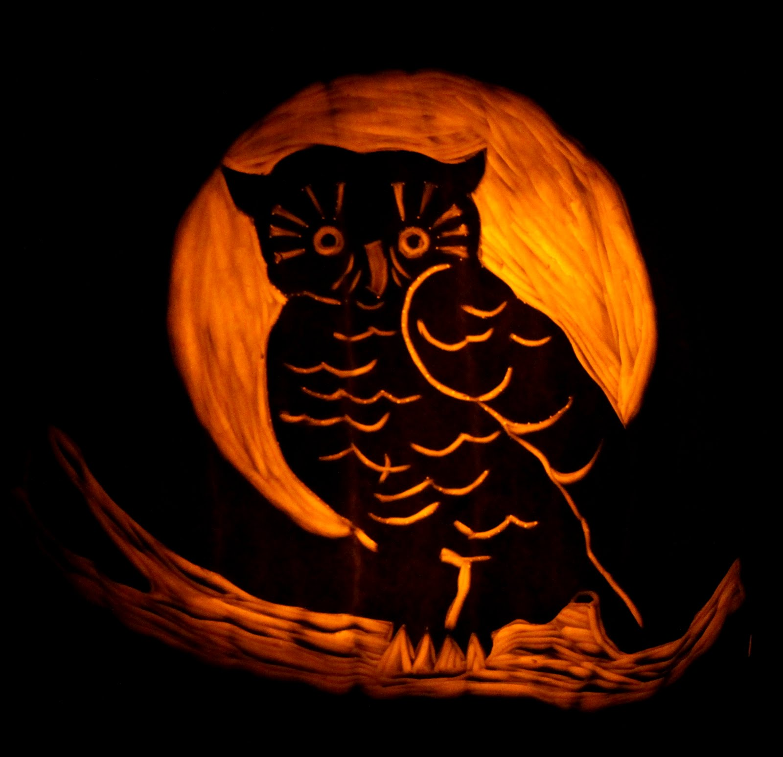 Designed by chance all hallows eve pumpkin tutorial for Pumpkin carving designs pictures