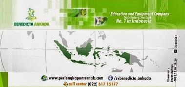 Dicari : TENAGA FREELANCE di Seluruh Indonesia
