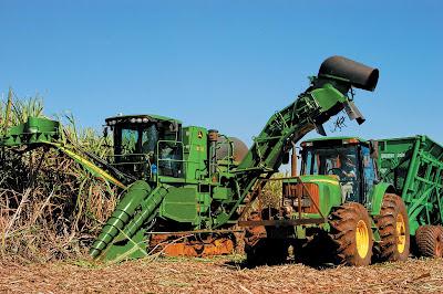 Gradualmente a mão de obra humana vem sendo substituida pela mecânizada nas lavouras de cana-de-açucar