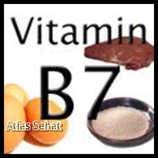 Manfaat Vitamin B7 Untuk Kesehatan - z-tempur.blogspot.com