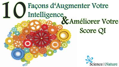 Comment Devenir Plus Intelligent Comment Augmenter Ses Capacités Intellectuelles