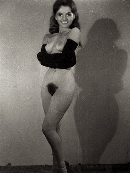 Dawn Wells Sey Ponytails Belly Shorts
