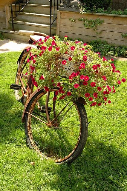 enfeite jardim bicicleta:Não ficou charmosa demais a cestinha floreira???