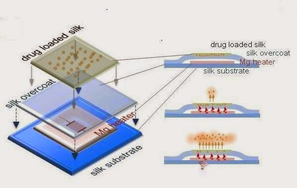 Wireless Electronic Implants Stop Staph, Then Dissolve