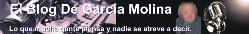 El Blog De Garcia Molina