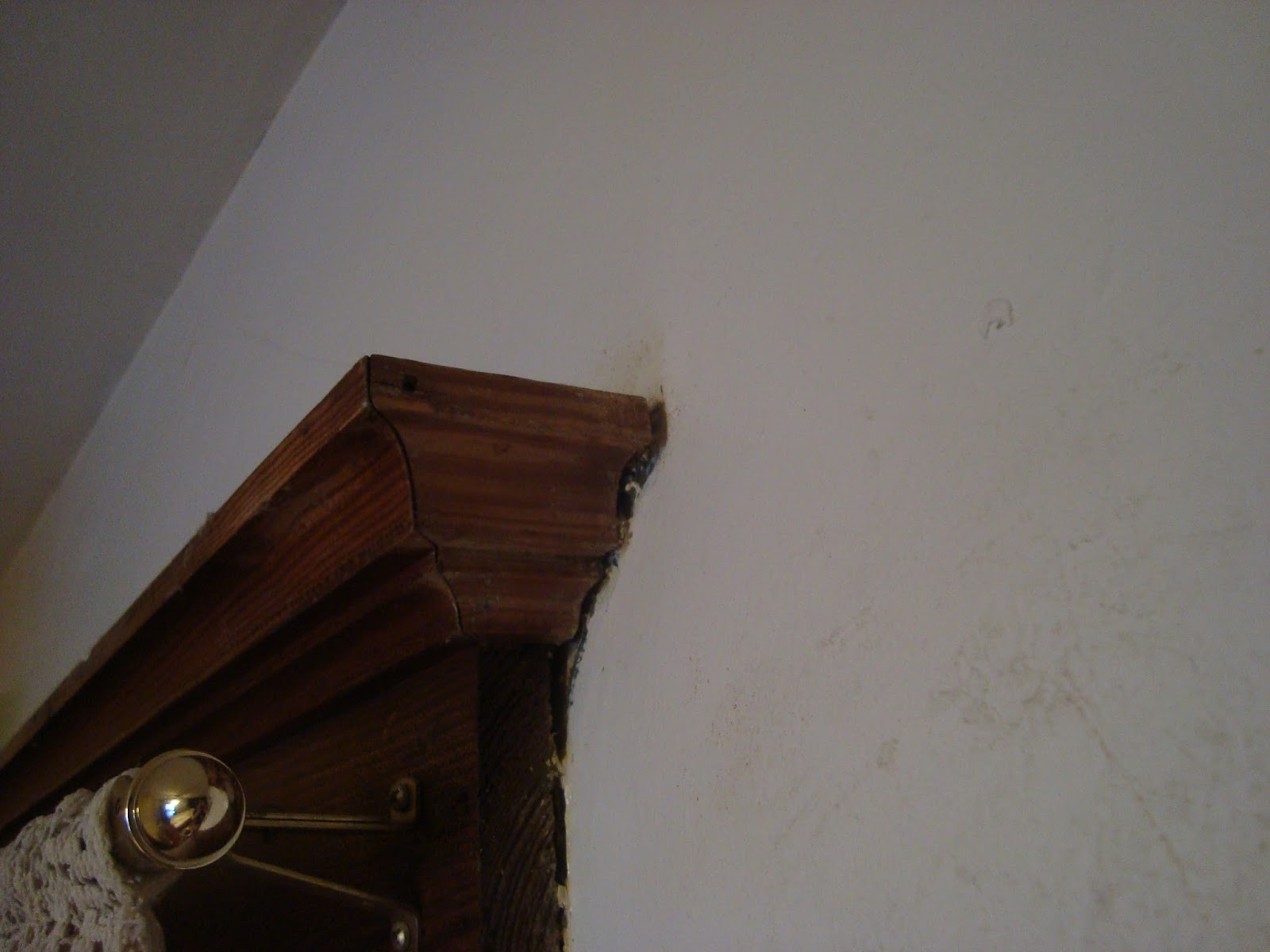 Lady Of Whimsy Remove Paint Splatter From Wood Trim After It Dries