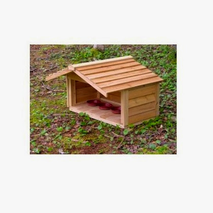 Outdoor Feeding Station for Cats