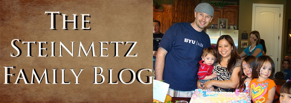 The Steinmetz Family Blog