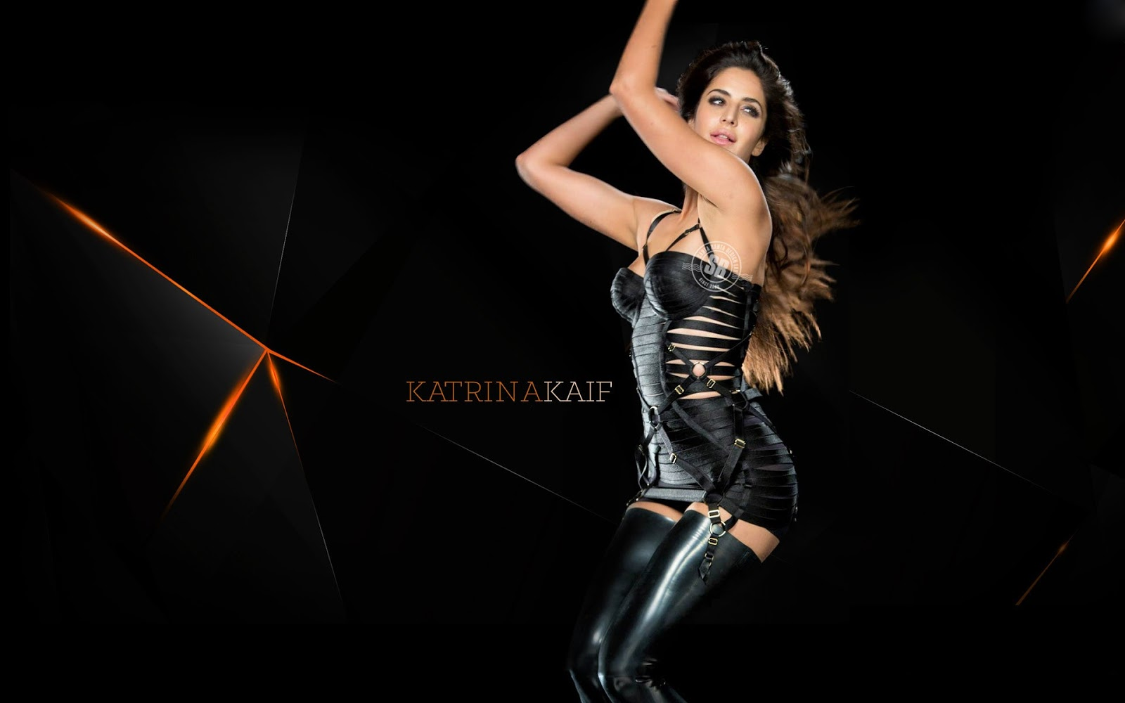 Beautiful katrina Kaif Sexy HD Wallpaper for desktop