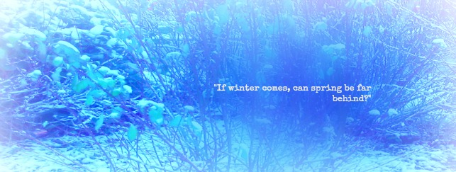 Winter foliage with quote