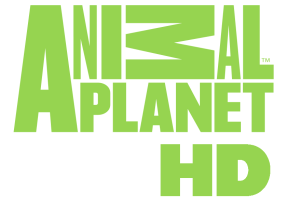 Watch Animal plant tv live