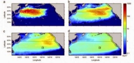 pacific ocean radiation  ... Of Radioactive Water