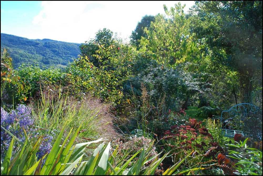Le jardin du mayet apr s la pluie de samedi for Le jardin high wine