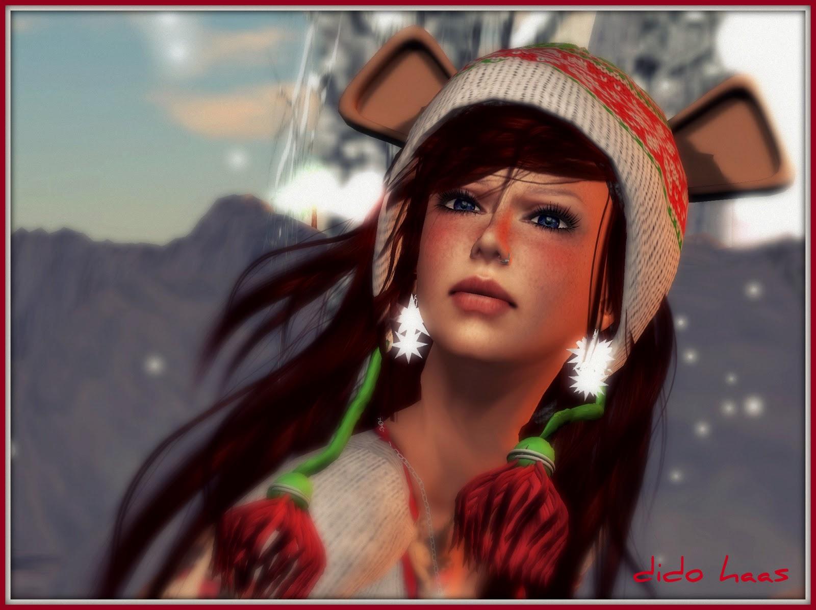 http://4.bp.blogspot.com/-wxwCIG3L36A/Tt_7d6bunaI/AAAAAAAAF1s/9nqgE7aowow/s1600/winter+mouse+dido+zoom.jpg