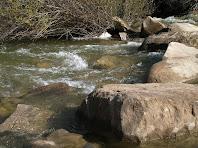 Uns grans rocs, col·locats a mode de passera, permeten creuar la riera