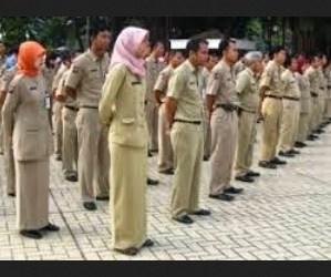 CPNS 2015 Membutuhkan 10 Ribu Pegawai Pajak