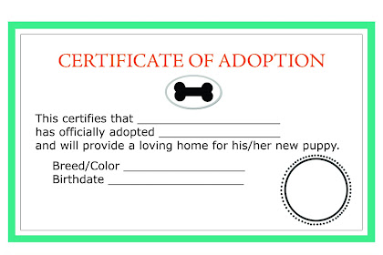 Adoption Essay Example