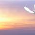 10 Citas Espirituales para Experimentar Milagros
