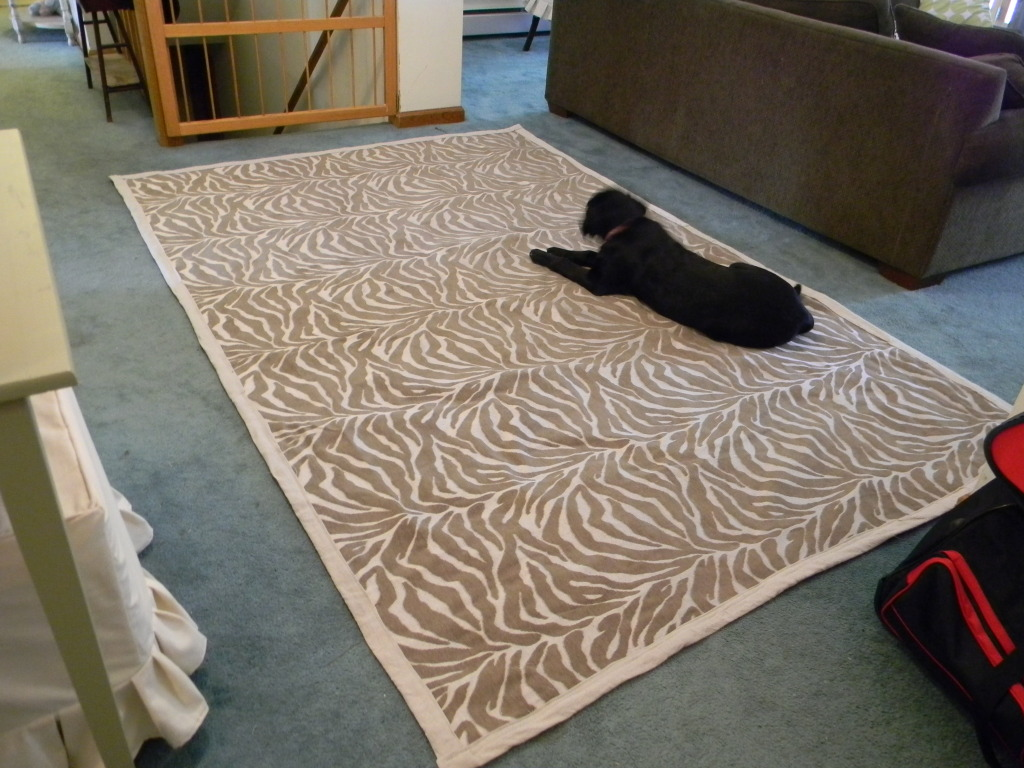 Great ideas diy inspiration 5 tatertots and jello for Diy fabric carpet
