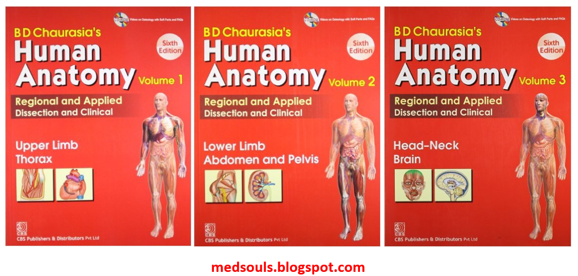 Textbook Of Anatomy Chaurasia Crisetext