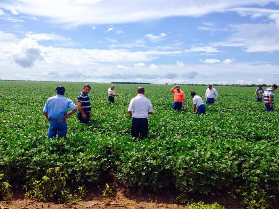 Investidores visitando nossas Fazendas no Piauí
