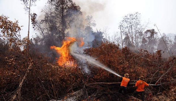 90 Persen Kebakaran Hutan karena Ulah Manusia