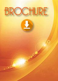 <b>Download Brochure</b>