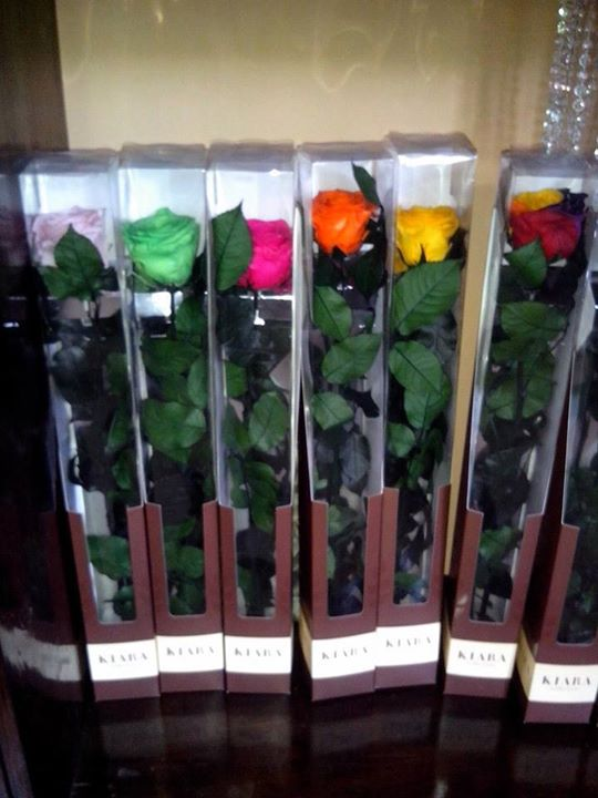Rosas Naturales Preservadas