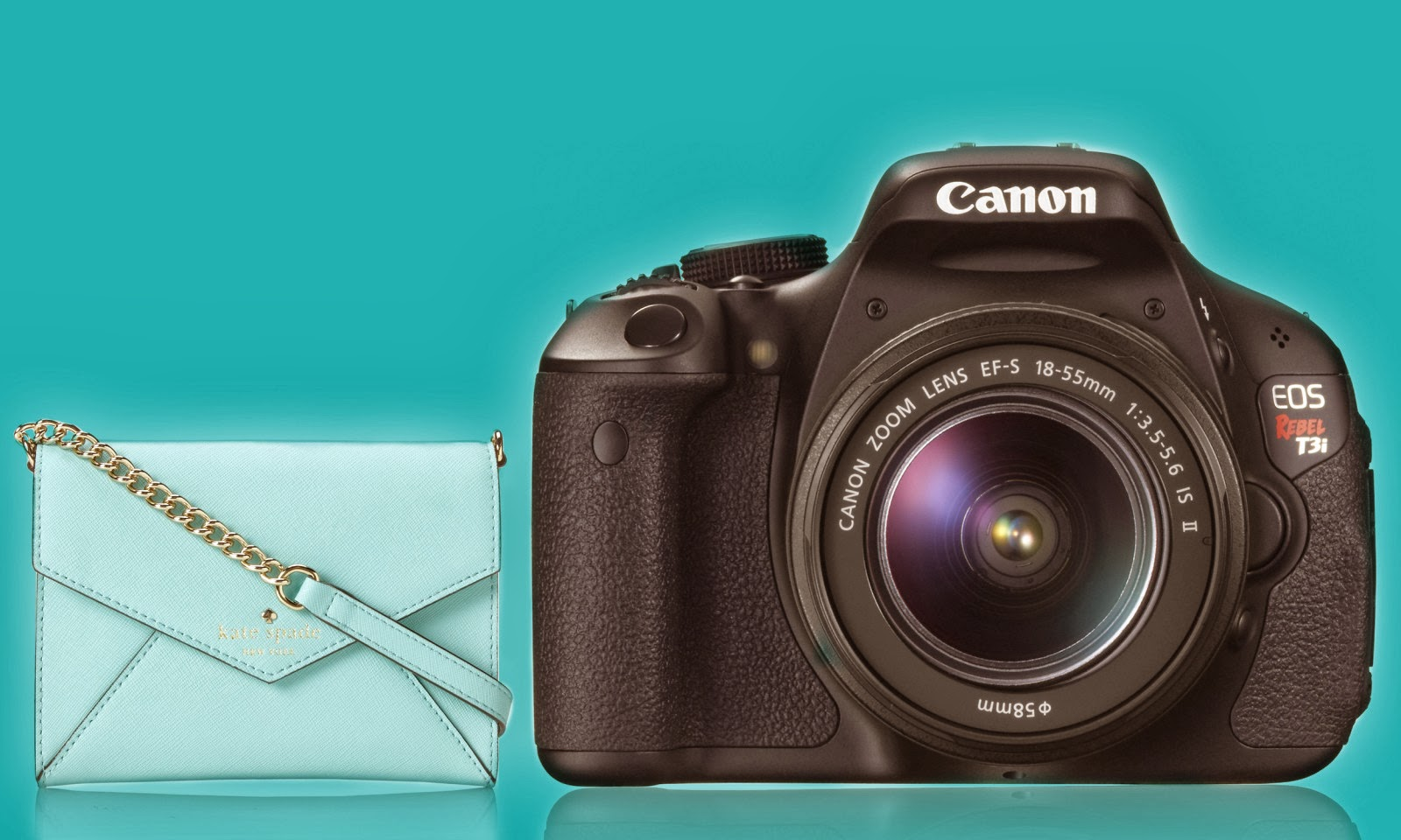 Enter to win a Kate Spade bag filled with Dani's favorite accessories, AND a Canon EOS Rebel T3i camera!  2/23