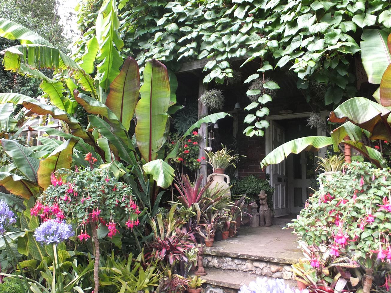 Alternative Eden Exotic Garden Will Giles Exotic Garden