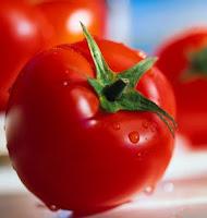 manfaat tomat