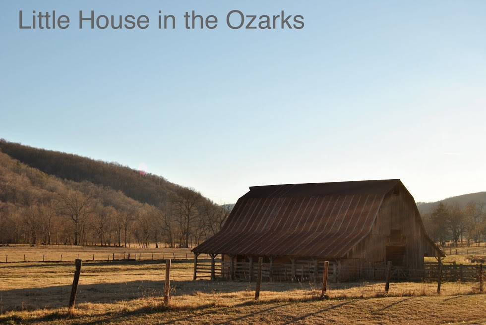 Little House in the Ozarks