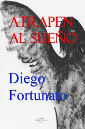 ¡GRATIS!... Versión digital en español de la novela ATRAPEN AL SUEÑO… Aventura, acción, suspenso