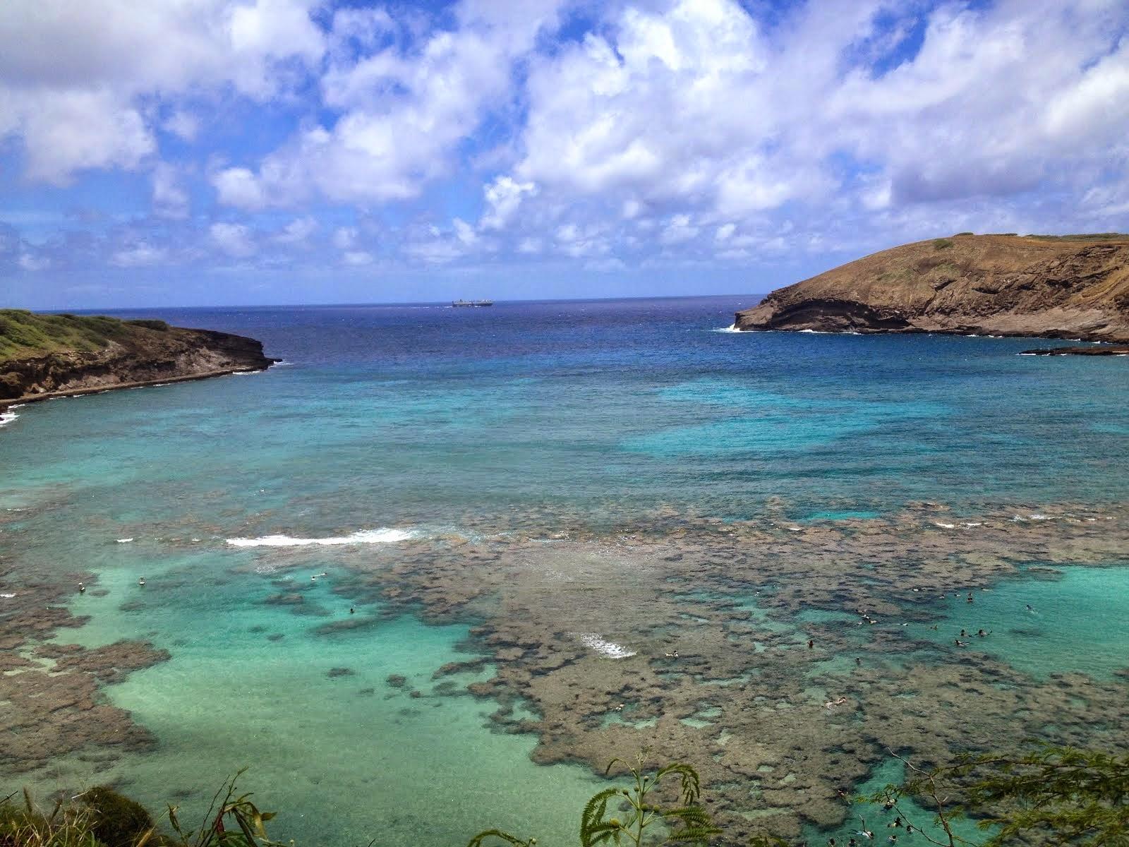 Hanauma Bay, Oahu 2014