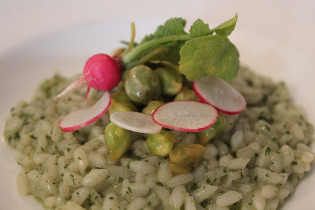 Stinging nettle risotto at Beacon Hill Bistro, Boston, Mass.