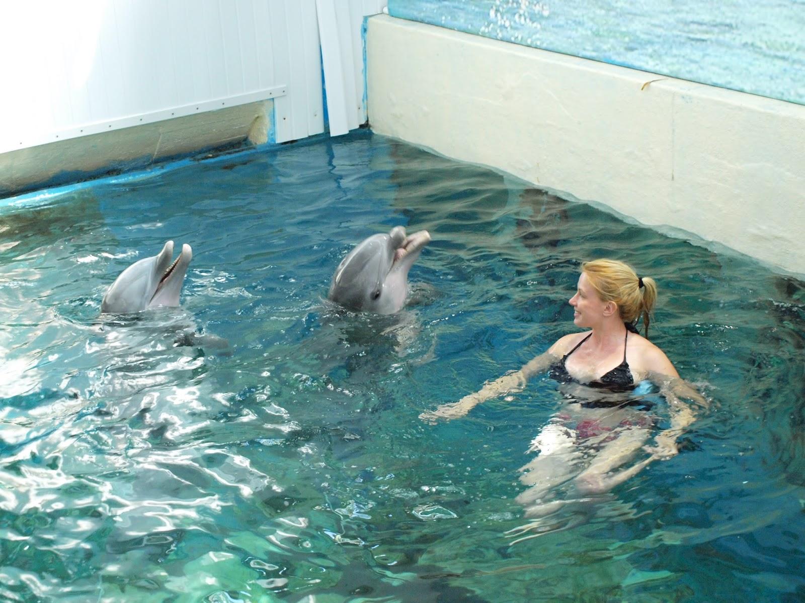 rencontre avec les dauphins nord