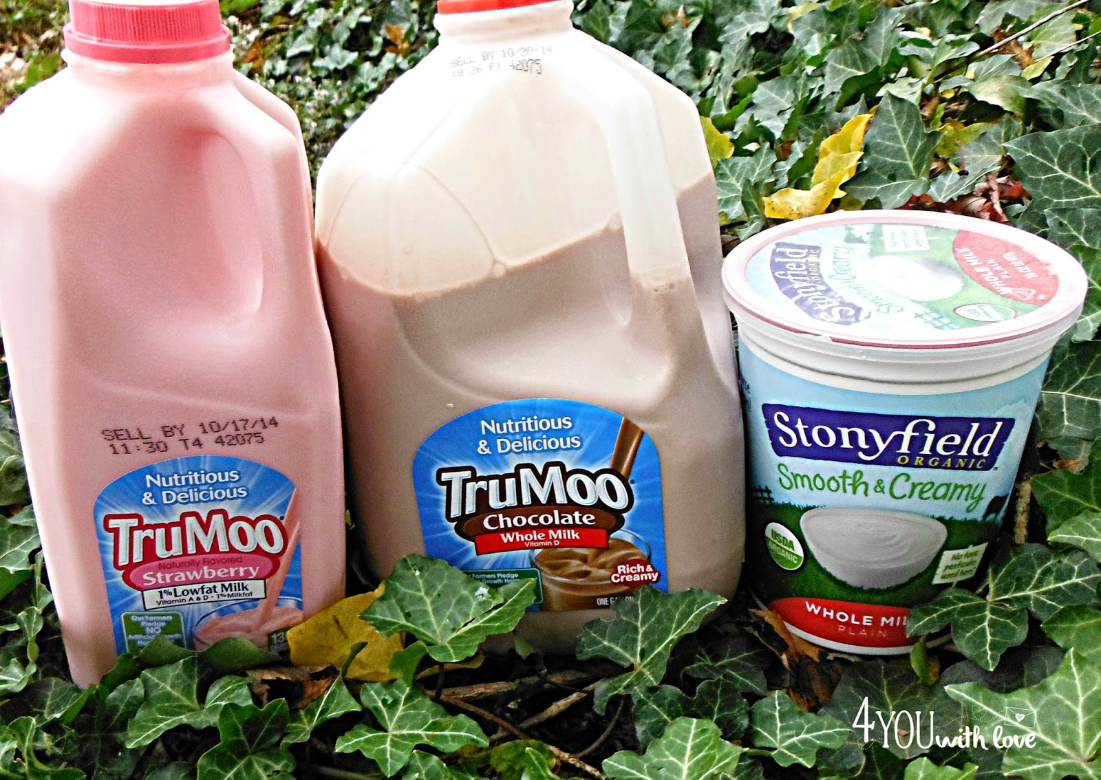 DIY Strawberry & Chocolate Yogurt with #TruMoo - 4 You With Love