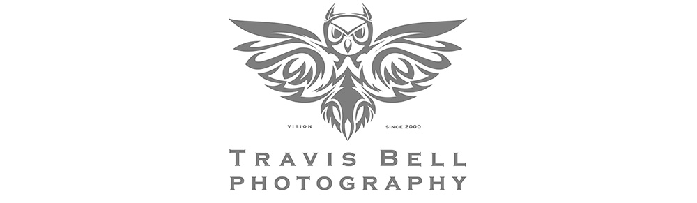 TRAVIS BELL'S BLOG
