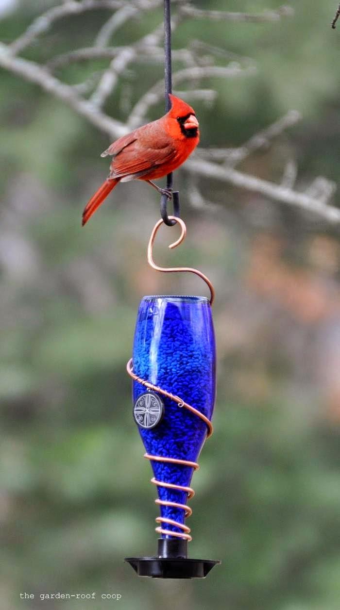 Comedero para Aves con Botellas de Vidrio e Impresión 3D