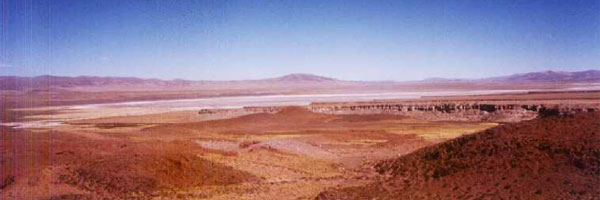 Bioma del desierto