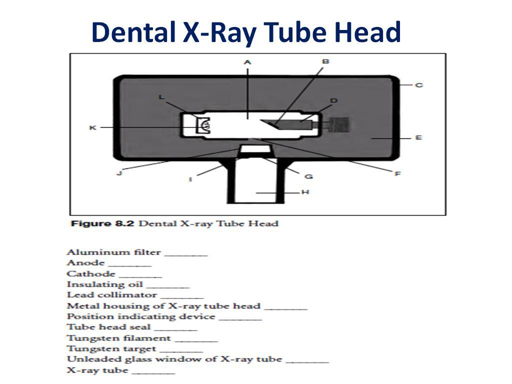 Paruhum Ahmad Daulay  Dental X