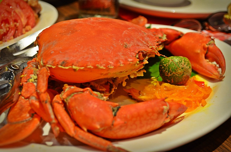 Marina's Crab